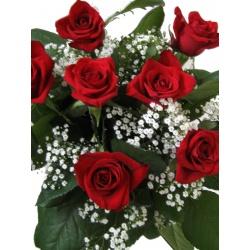 Roser med hvitt